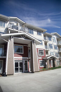 The Best Place to Call Home-Auburn Bay Resort!STB