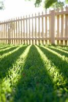 ***Lawn Care***