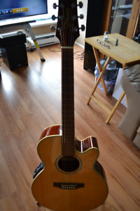 TAKAMINE ACOUSTIC ELECTRIC GUITAR G SERIES