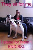 Experienced , professional reliable pet sitter
