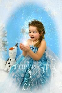 NOW BOOKING CINDERELLA & FROZEN PHOTO SESSIONS London Ontario image 4