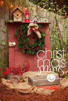 Chistmas Mini Sessions - 30min and $125 total ( w $50 deposit)