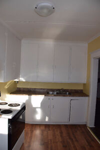 Bright Upper Level 3 Bedroom apt close to Downtown Avail NOW St. John's Newfoundland image 4