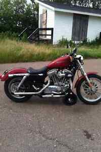 Sportster 883 (1200cc kit)  MUST SELL