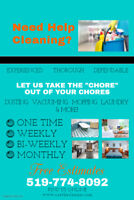 House Cleaner- Brantford, Paris, and Surrounding Area