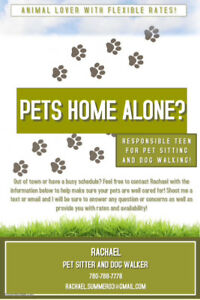 Pet sitter! Responsible and with flexible rates!