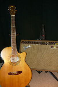 Cort guitar and fender accoustic amp