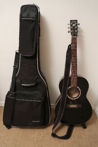 Art and Lutherie Folk Guitar
