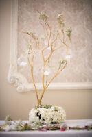 Manzanita tree -- wedding centrepieces DIY