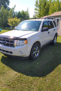 2012 Ford Escape XLT VUS