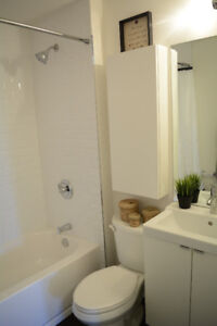 Sublet- from Janary to April (6 Tisdale St S)