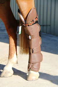 AUSTRALIAN SADDLES, TACK, BITS, TRAINING AIDS, DVD, ROPE Kingston Kingston Area image 8