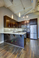 Gorgeous 1 Bedroom Condo at the Arrow Lofts