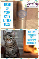 Tired of the smell in your home from your pet?