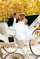 Beautiful Horse Drawn Carriage Service!