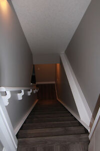Pet Friendly Basement Suite Apartment for Rent in Spruce Grove