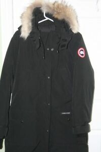 Genuine Canada Goose (Christmas is coming)