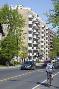 Lease Transfer for a 3 1/2 in Outremont Near Edouard Monpetit