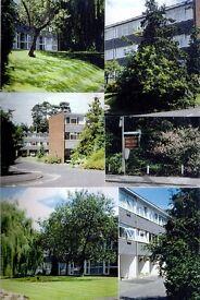 Ground Floor Studio Flat in Wokingham