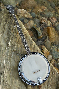 Help-My Banjo was STOLEN from me