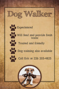 Dog Training and Walker