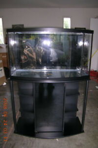 38 Gallon Bowfront Fish Tank and Stand