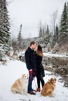 Mountain Family, Engagement, Maternity & Elopements