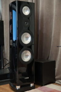 Canton Reference 3.2 DC high end speaker
