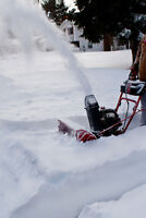 SNOW BLOWING by EASYCARE (INSURED)