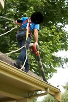 Quick CHEAP Quote within hours Gutter and Eavestrough Cleaning