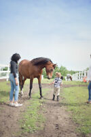 PRIVATE  HORSEBACK RIDING LESSONS