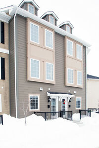 Judy Lindsay Team Presents - #117-20 Ancaster Gate