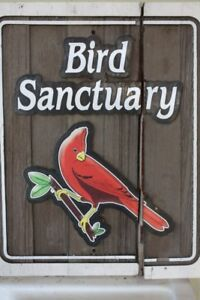Personal bird sanctuary will to rescue/adopt unwanted birds
