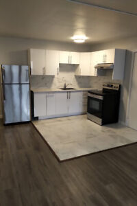 5 MINS TO DOWNTOWN 1 BEDROOM FULLY RENO, AVAIL SEPT 1ST