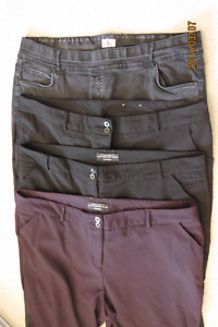 Womens plus size dress pants and a pair of black stretch jeans.