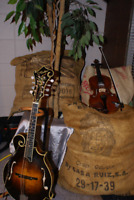 Music (strings and beginning piano) lessons in Fairview AB