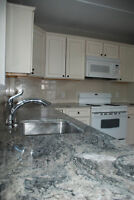 ByWard Market newly renovated 2 bedroom apartment
