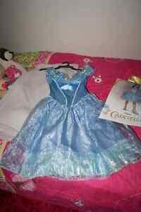 Cinderlla Dress Size 4-6