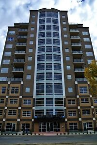 Downtown furnished 2 bed/ 2 bath condo incl everything!