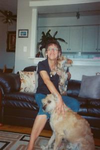 Debora's Dog Walks and Cat Visits/Mt. Pleasant & Eglinton