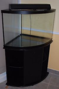 Aquarium 37 gallons (tout équipé / all equipped)
