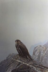 ROBERT BATEMAN - DARK GYRFALCON - IN ORIGINAL FOLIO