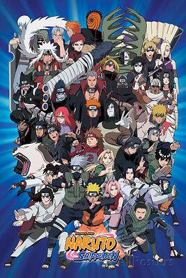 Naruto Characters Poster Print, 24x36