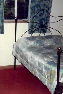 Antique Wrought Iron double bed with brass knobs