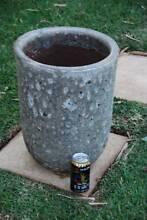 Large atlantis garden pot plant Excellent condition Panania Bankstown Area Preview