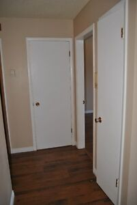 One Bedroom Apartment  with free telus internet and cable Strathcona County Edmonton Area image 2