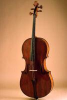 Cours de violoncelle, Professeur de violoncelle