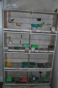 Canary or finch double breeding cages
