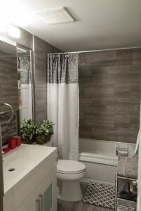 Luxury Furnish Inclusive 1 or 2 Bed University/Lincoln Area Kitchener / Waterloo Kitchener Area image 4