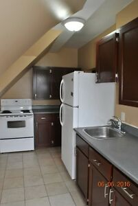 1 Bedroom Downtown Moncton - Oulton College - Heat&Lights Incl.